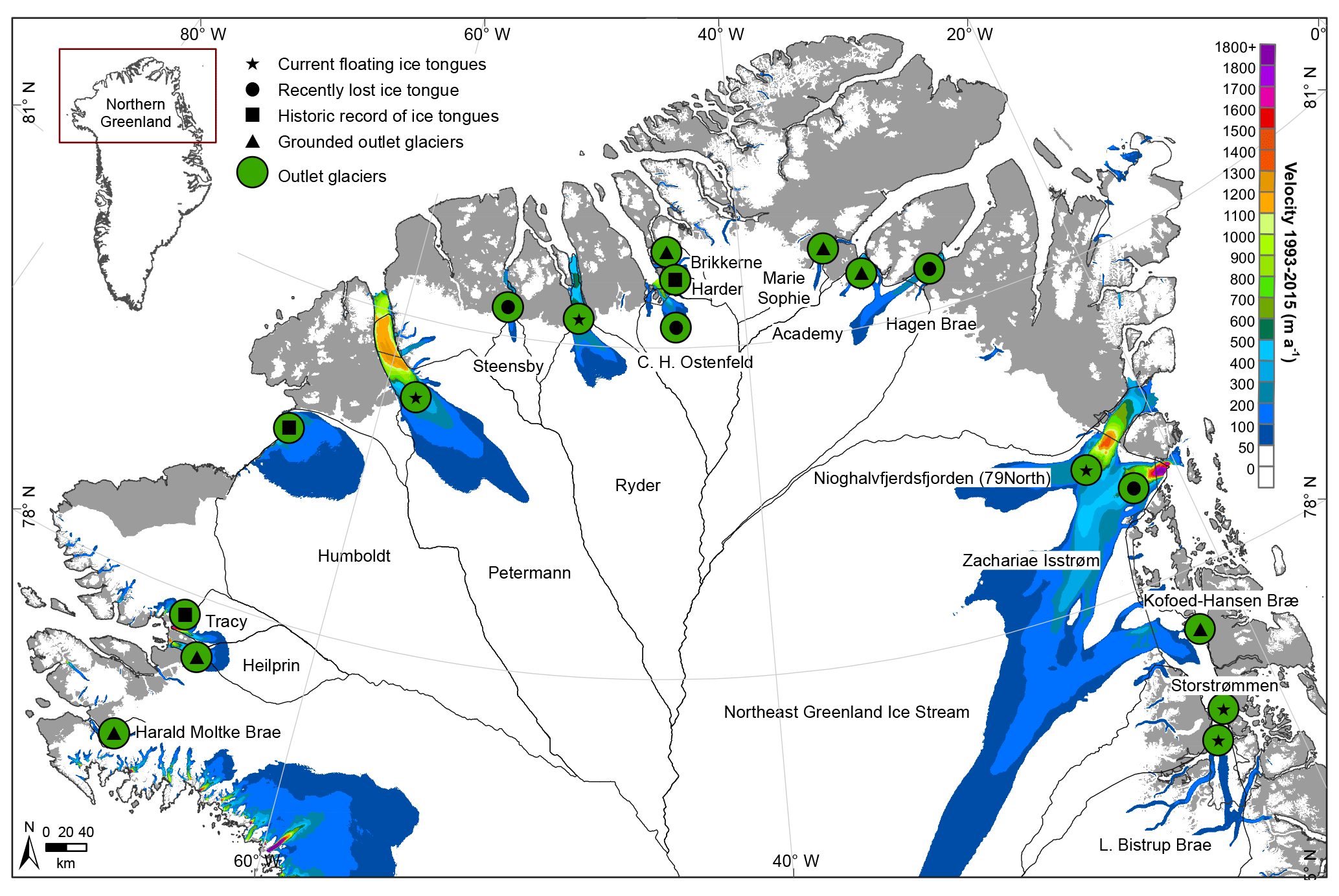 TC Dynamic changes in outlet glaciers in northern